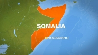Eight killed in blast at Somali market: official