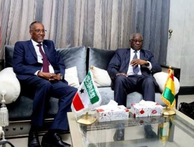 Somaliland makes another diplomatic breakthrough with president's visit to Guinea